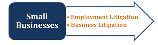 businesslitigation